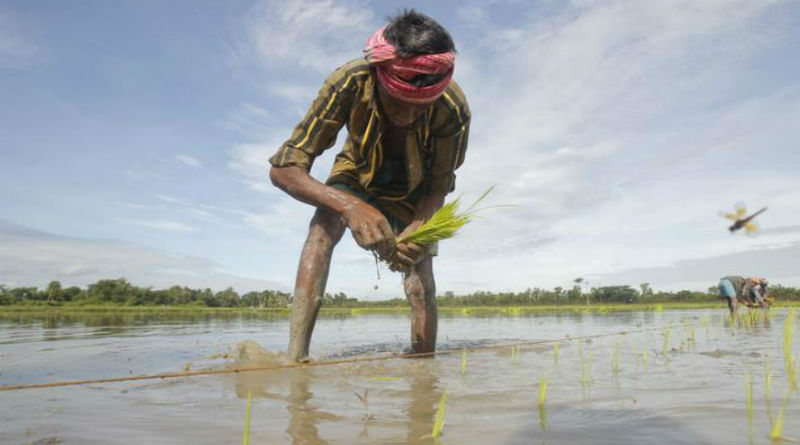 Doubling Farmers' Income